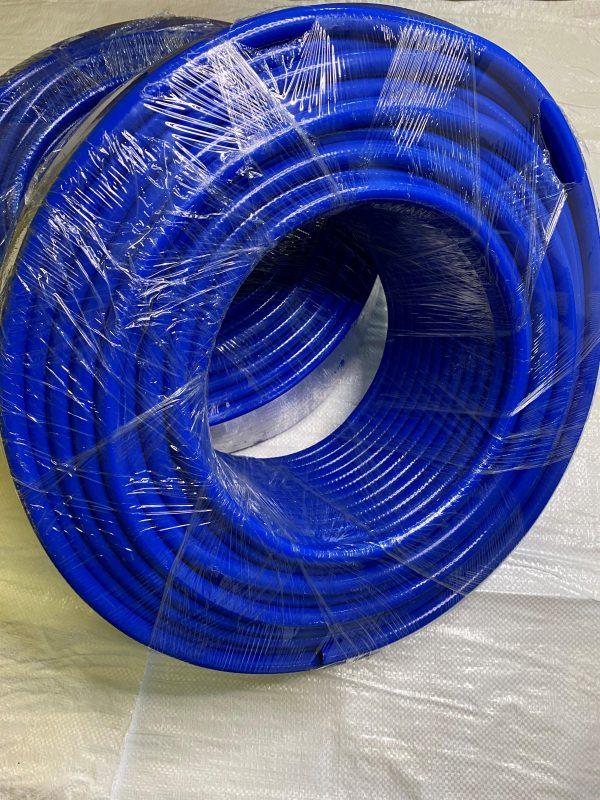Blue Hose scaled